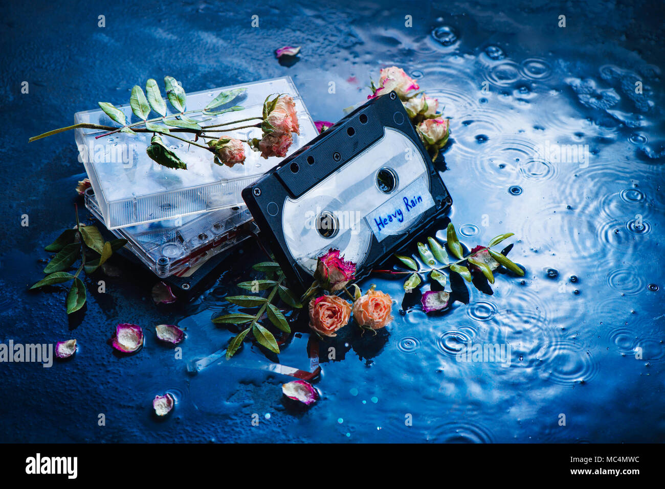 Audio cassette tape with Heavy Rain label in a scene with rose petals and raindrops. Melancholy music for rainy weather. Nostalgia concept copy space. - Stock Image