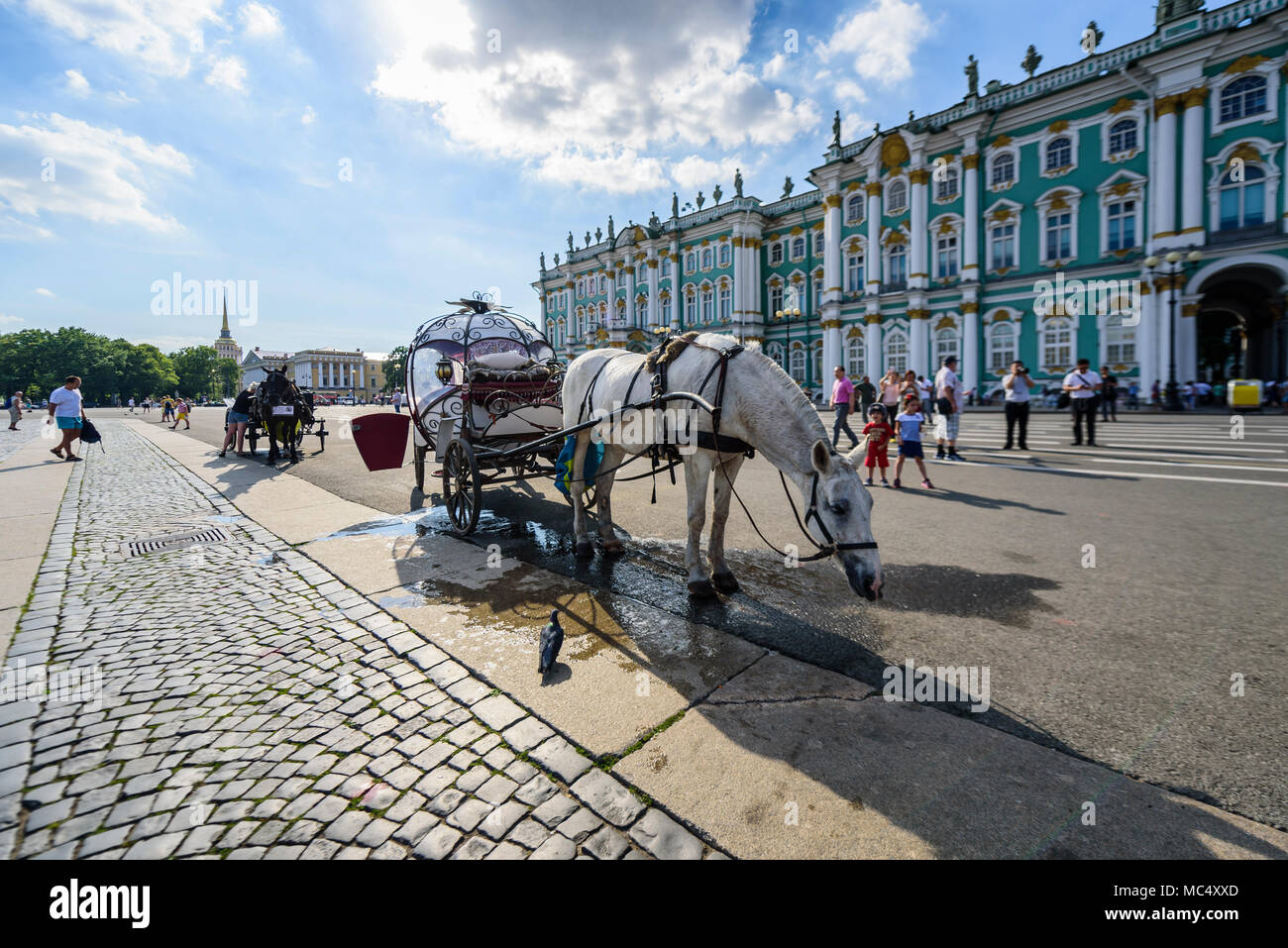 The Hermitage on Palace Square St Petersburg Russia horse and carriage - Stock Image