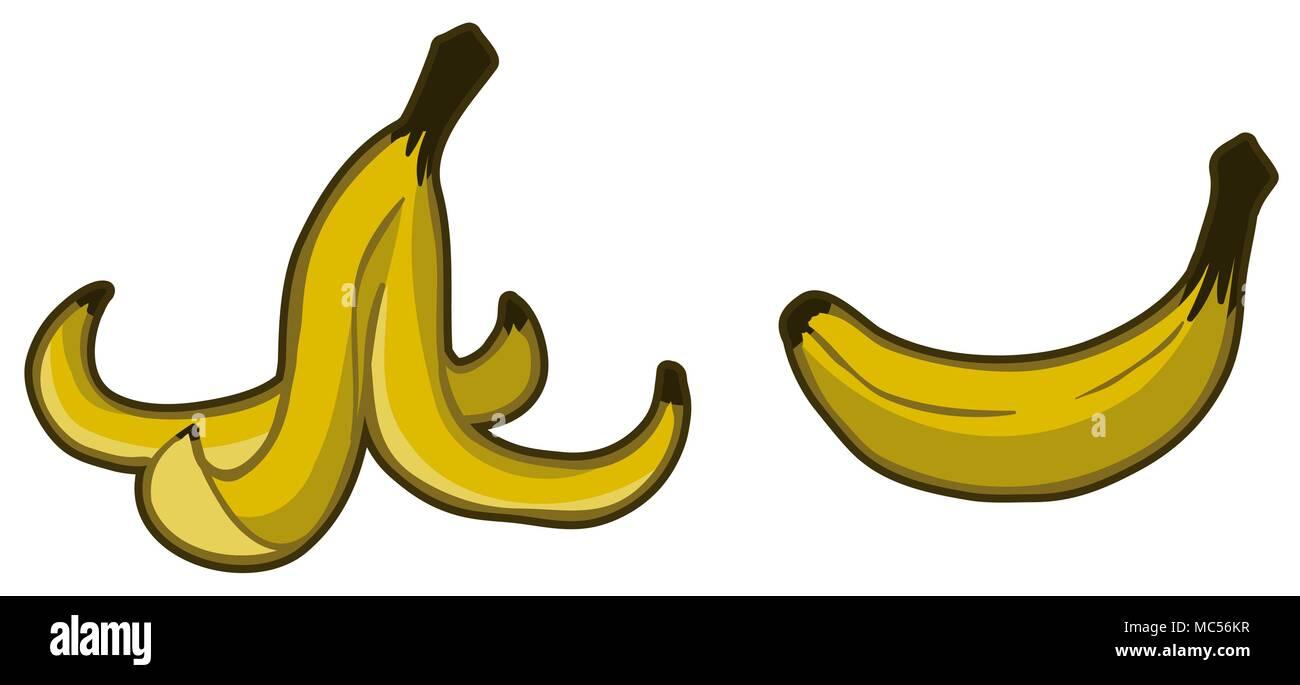 Banana peel fruit food waste cartoon, horizontal, yellow color vector illustration, isolated - Stock Image