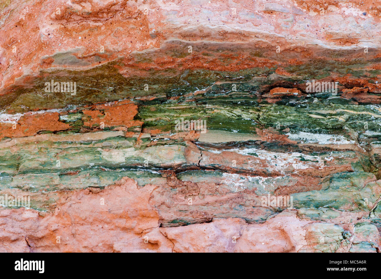 Bright Angel Shale formation in lower Marble Canyon; Grand Canyon National Park, Arizona - Stock Image