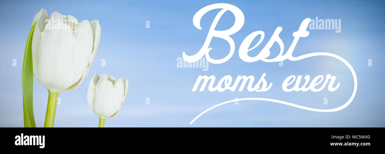 Composite image of best moms ever in white - Stock Image