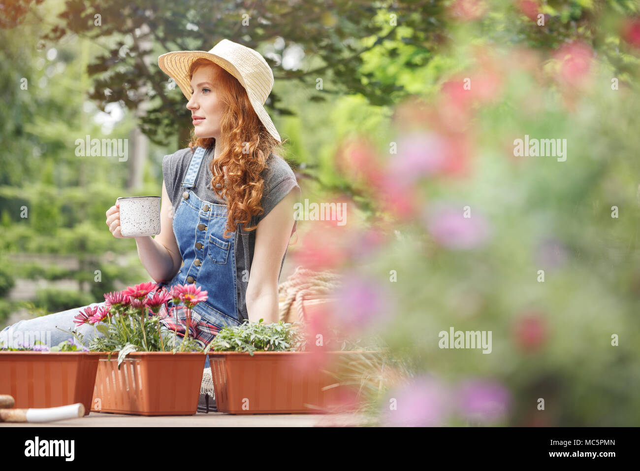 Pretty woman in straw hat on her head drinking tea on terrace, sitting next to containers with red flowers Stock Photo