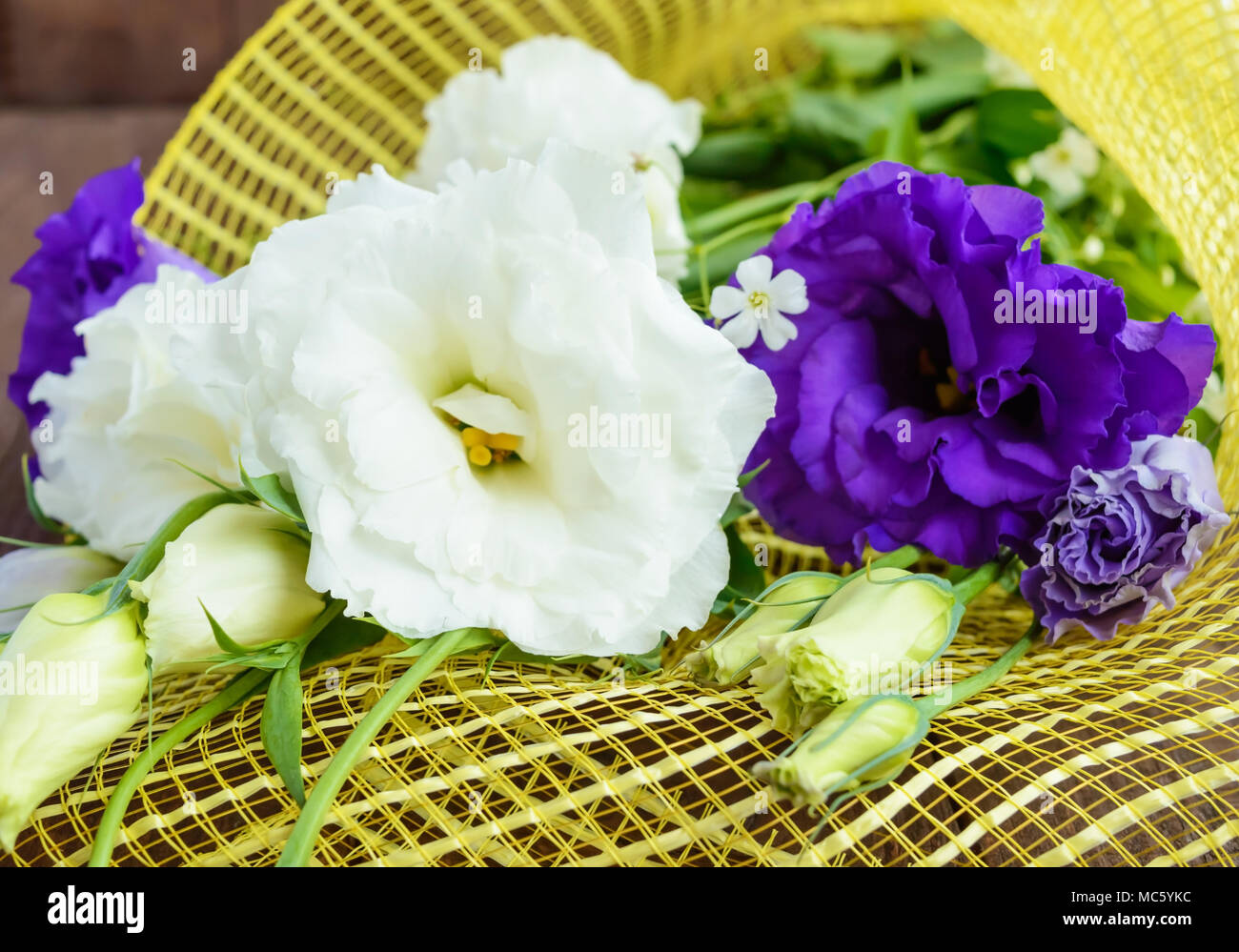 Freshly picked white and purple flowers eustomy (lisianthus)  on the wooden background. Close up Stock Photo