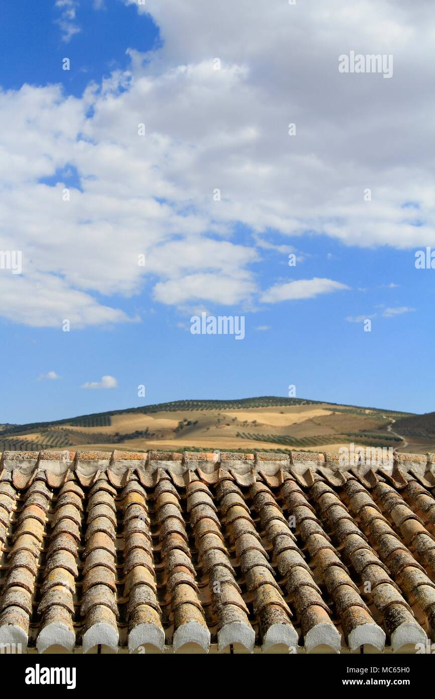 Spanish roof tiles, Alhama de Granada, Andalusia, Southern Spain - Stock Image