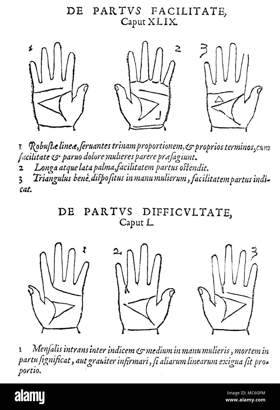 PALMISTRY Six palms and corresponding readings, relating to