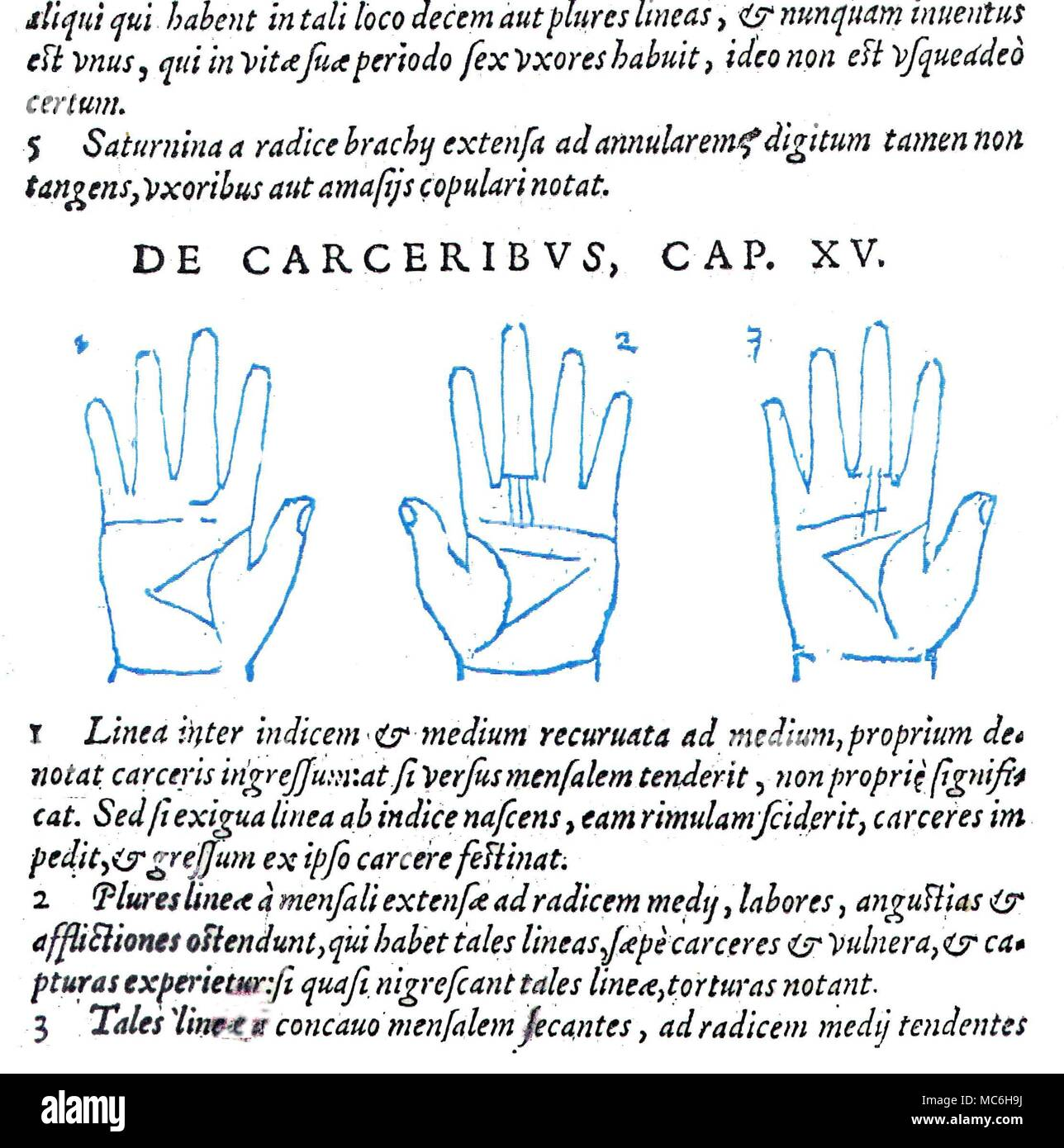 Middle Finger Left Hand Stock Photos & Middle Finger Left