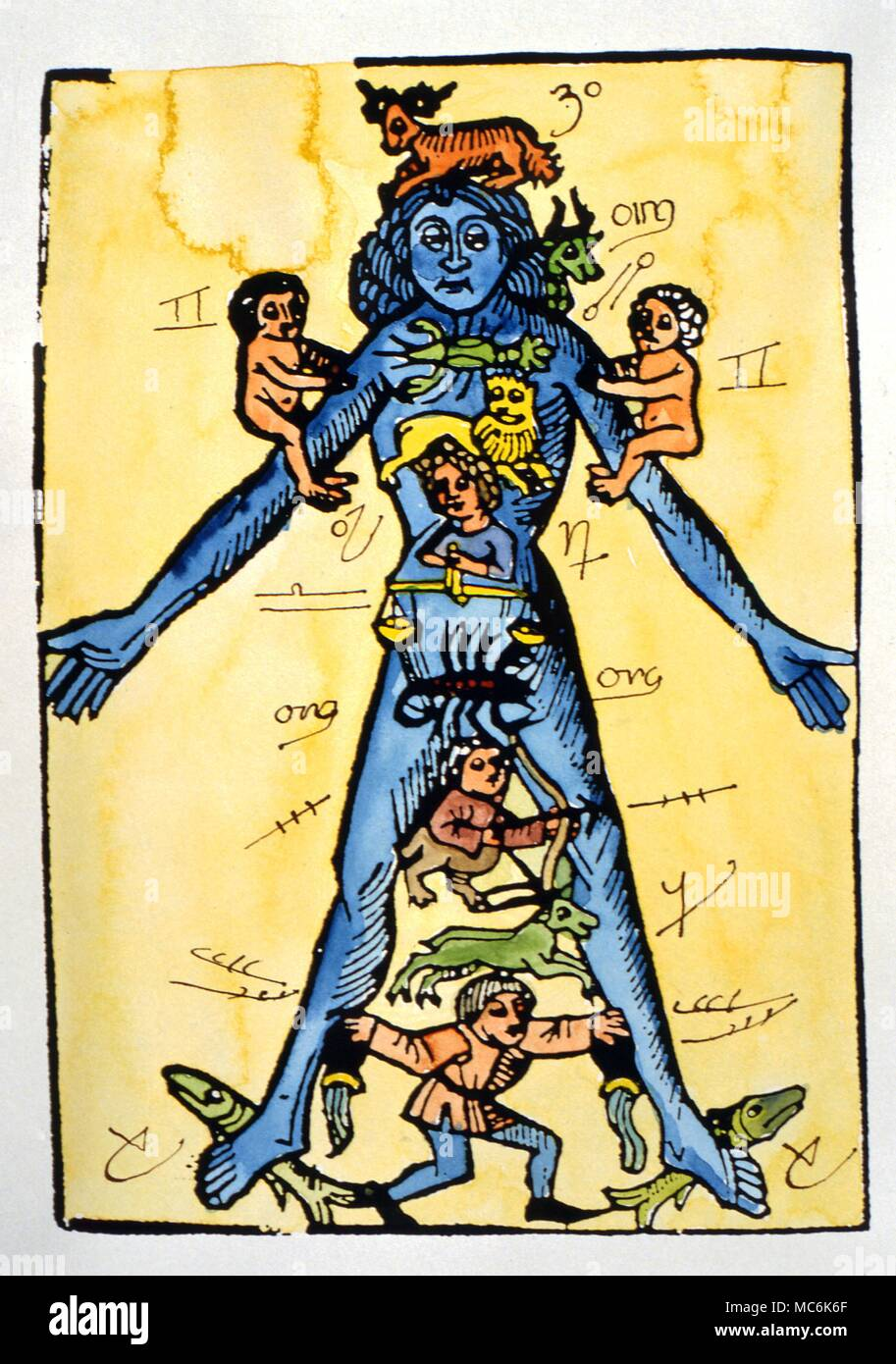 Zodiac Man . Late 15th century woodcut depicting the zodiacal man with the zodiac signs apportioned to the relevant parts of his body This print is unique in having manuscript sigils for the 12 signs overdrawn. Sigils are 15th century - Stock Image
