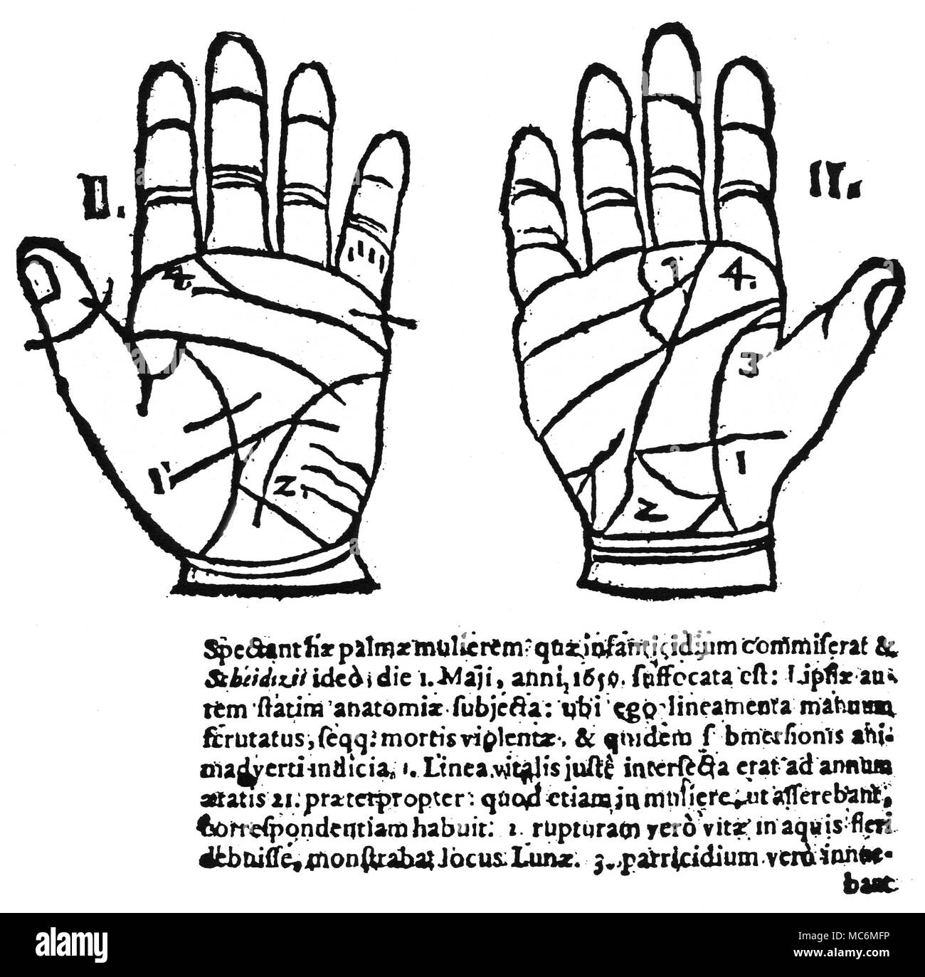 Palmistry Cut Out Stock Images & Pictures - Alamy