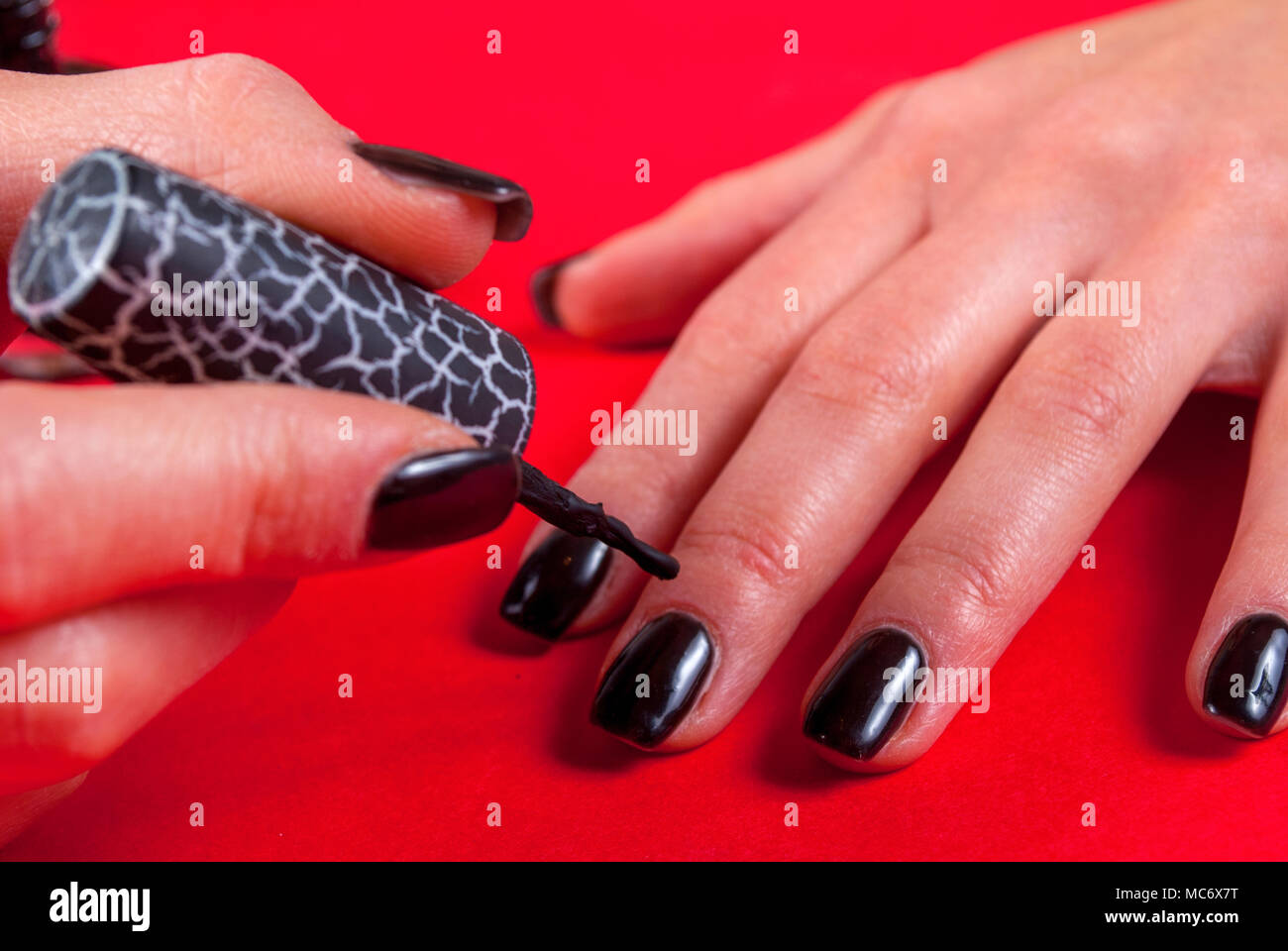 Women applying black nail polish gel herself on red background with ...