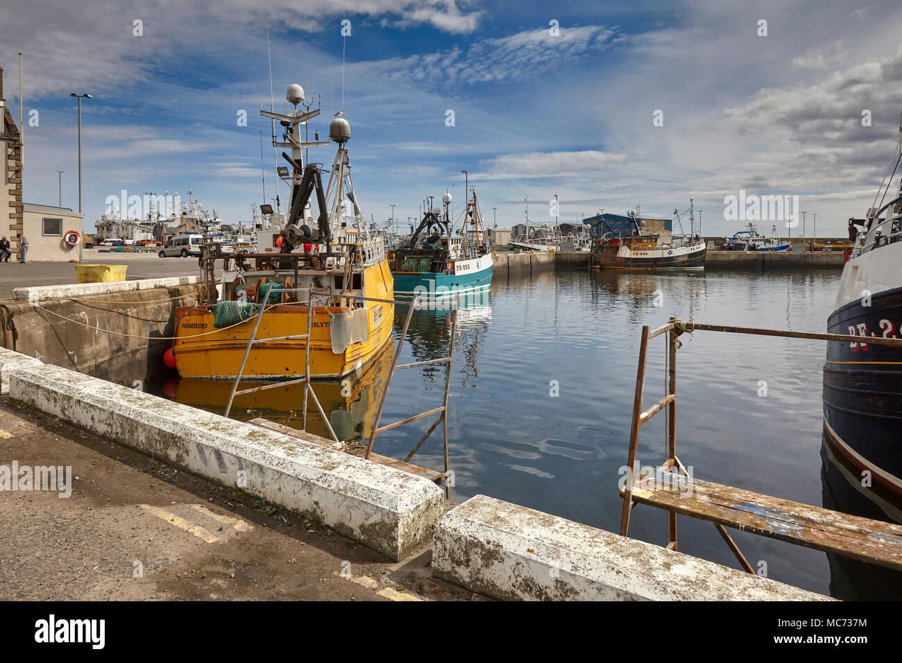 Near shore fishing vessels, Nimrod BH227, EL-SHADDAI FR 285 and Davanlin FR890 moored at Fraserburgh Harbour - Stock Image