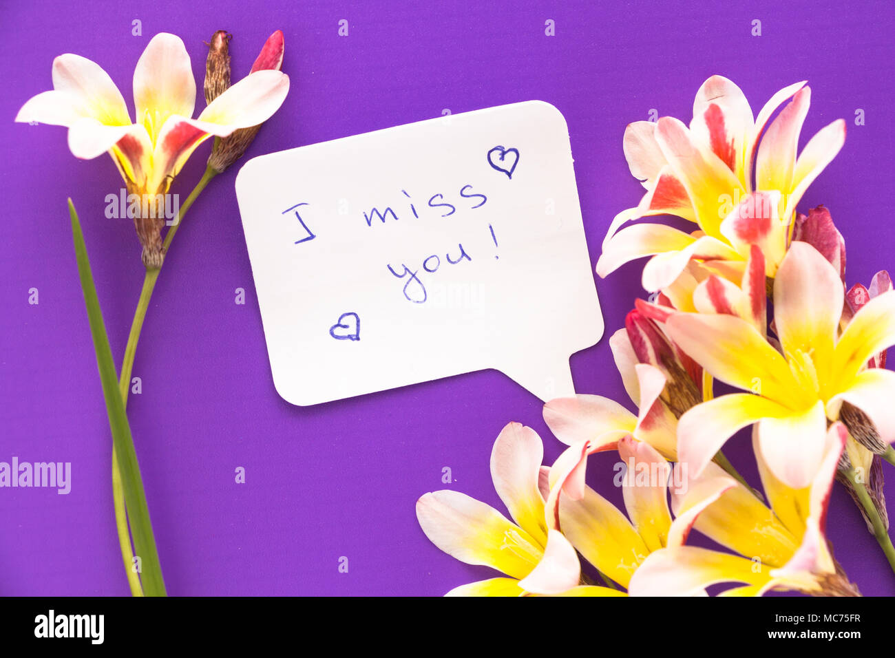 I Miss You Stock Photos I Miss You Stock Images Alamy
