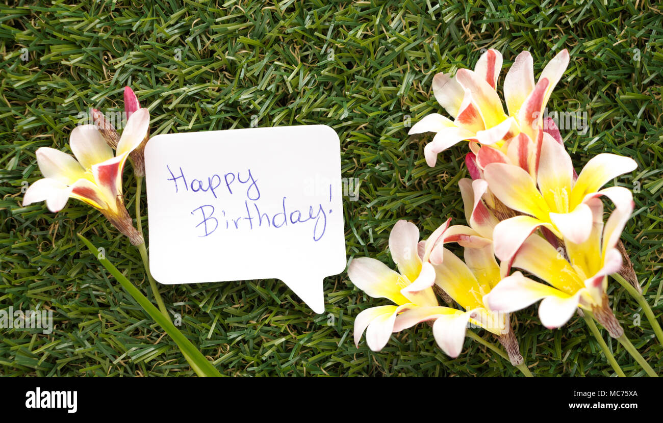 Note in shape of a chat bubble with words happy birthday and note in shape of a chat bubble with words happy birthday and flowers on green grass stock photo 179637874 alamy izmirmasajfo Choice Image
