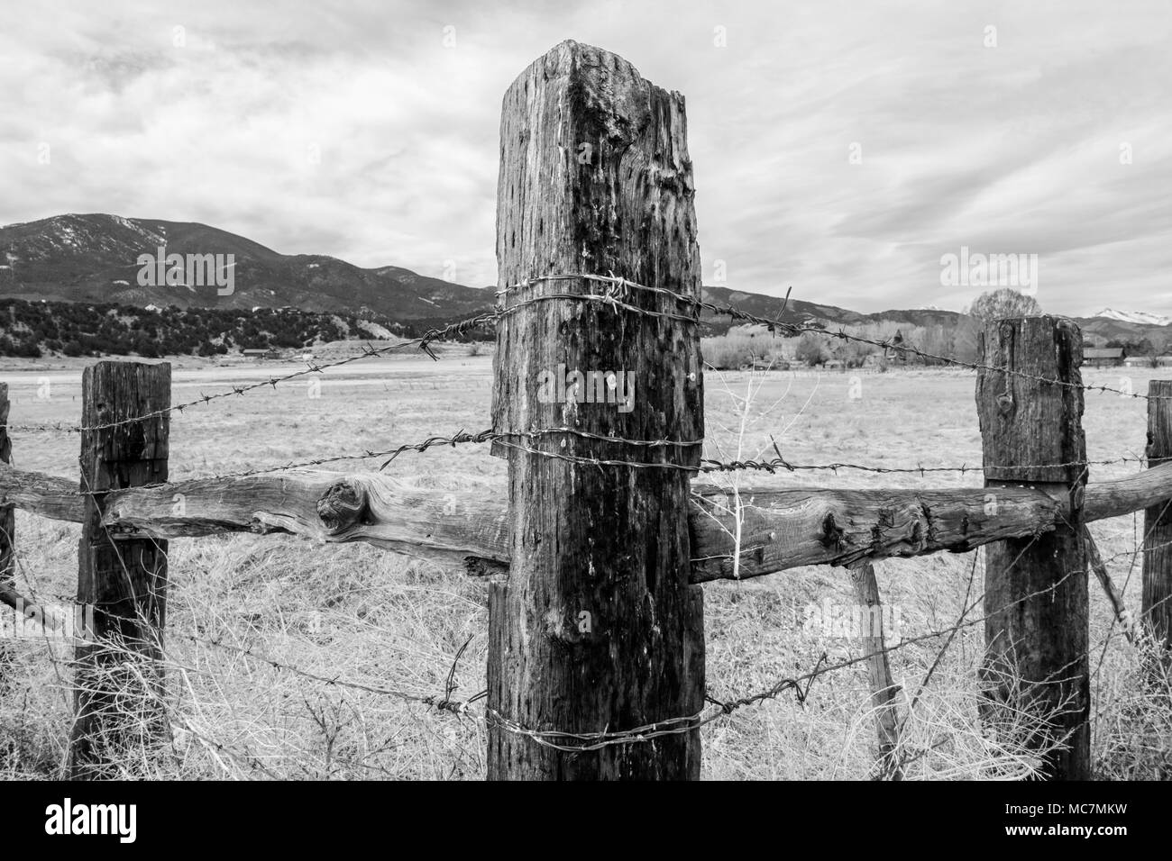 Black & white of wooden fencepost and barbed wire; Vandaveer Ranch; Salida; Colorado; USA - Stock Image