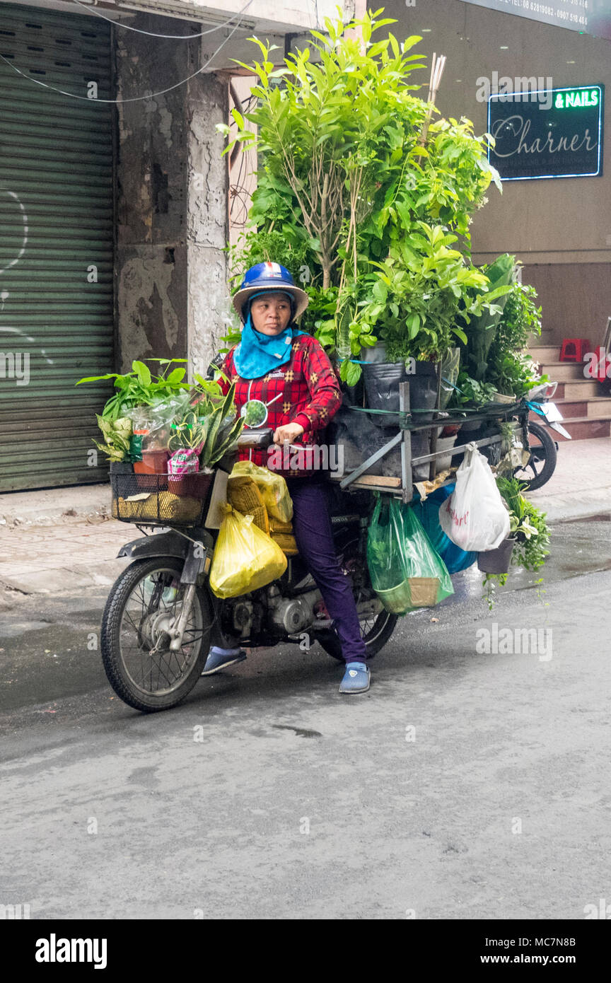 A woman on a motorcycle loaded with pot plants in Ho Chi Minh City, Vietnam. - Stock Image