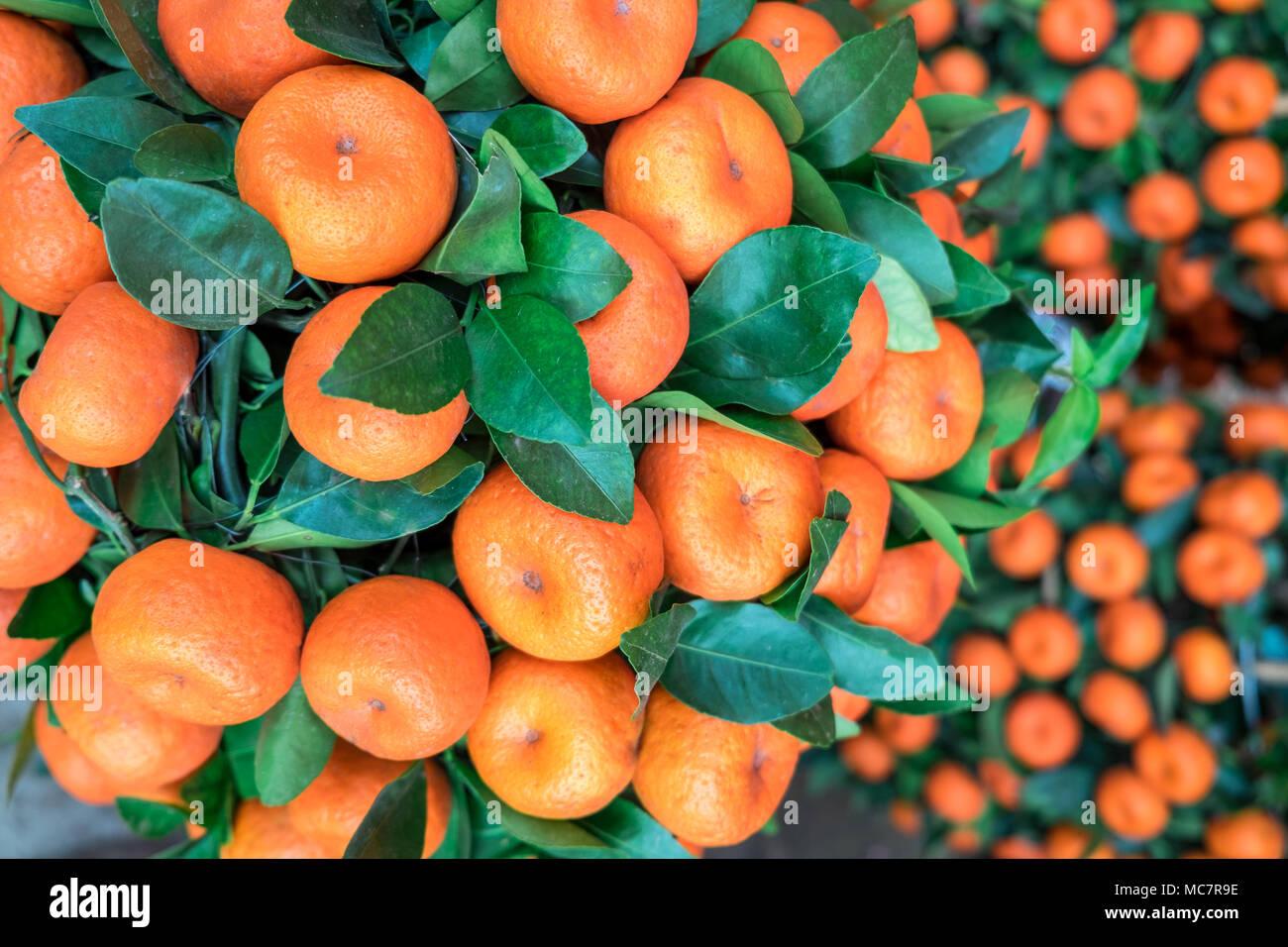 Mandarin Chinese Symbol Stock Photos Mandarin Chinese Symbol Stock