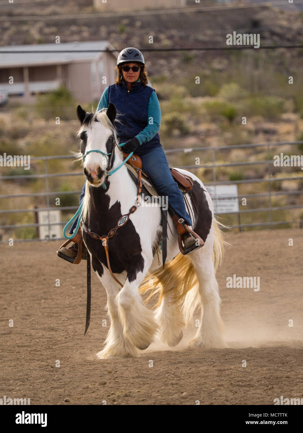 mature woman riding horse united states stock photos & mature woman