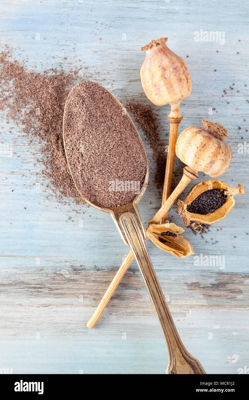 Poppy flour for coeliac people in silver spoon with poppy heads on wooden table from above. - Stock Image