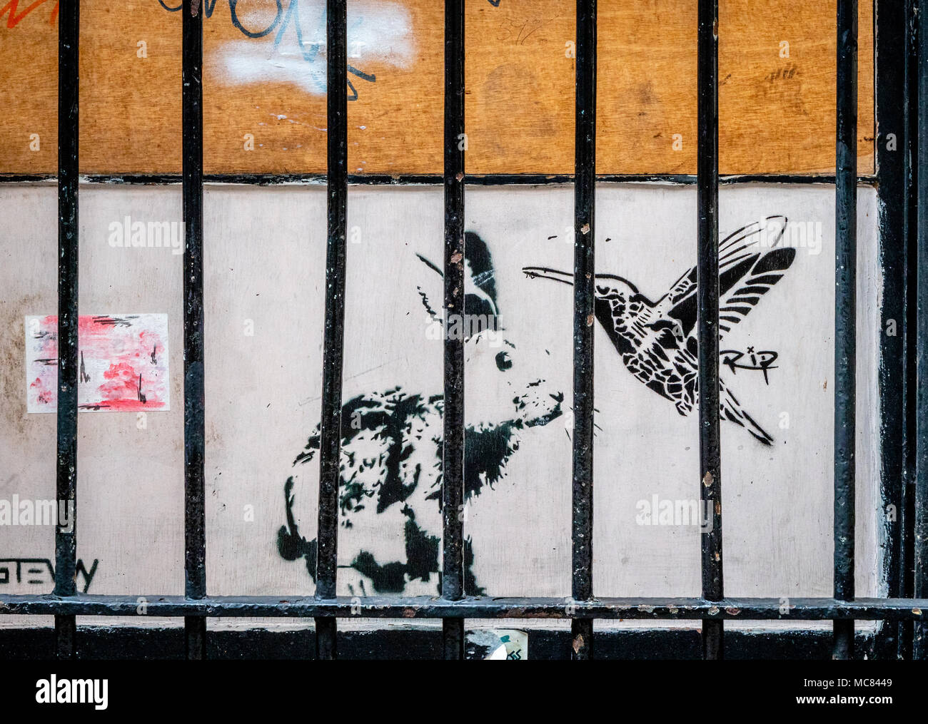 Street art featuring a rabbit and humming bird behind bars in a narrow alley in the centre of Bristol UK Stock Photo