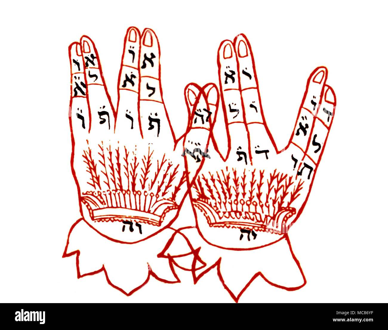 CABBALA The Cabbalistic system has eestablished a relationship between the letters and numbers and the human body including the hand.  In this example, the association is with the 32 ways of the Sephirothic wisdom - Stock Image