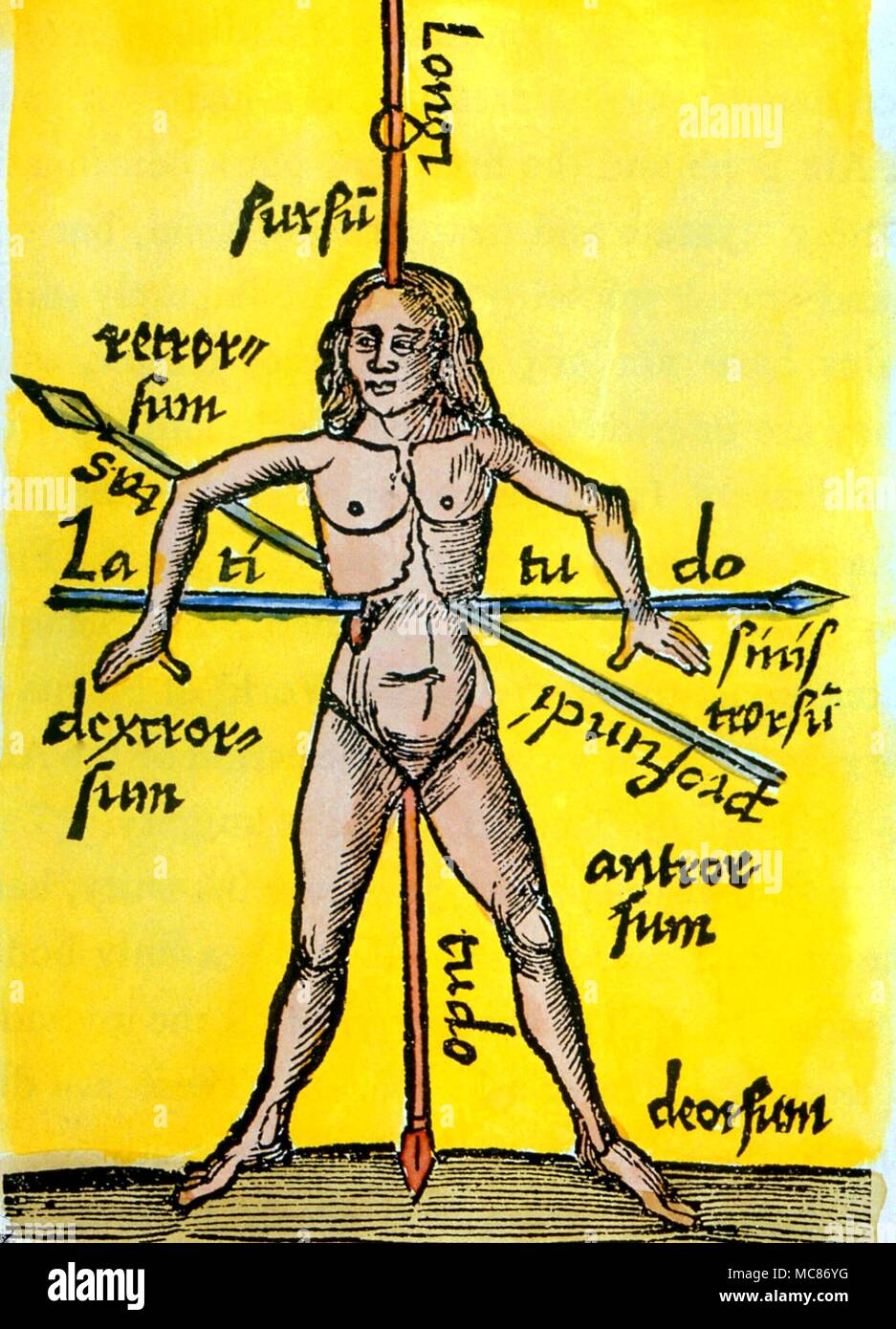 CABBALA The macrocosmic man in terms of height, breadth and depth - the three spiritual directions, from the Schotus (1503) edition of 'Margarita Philosophica.' - Stock Image