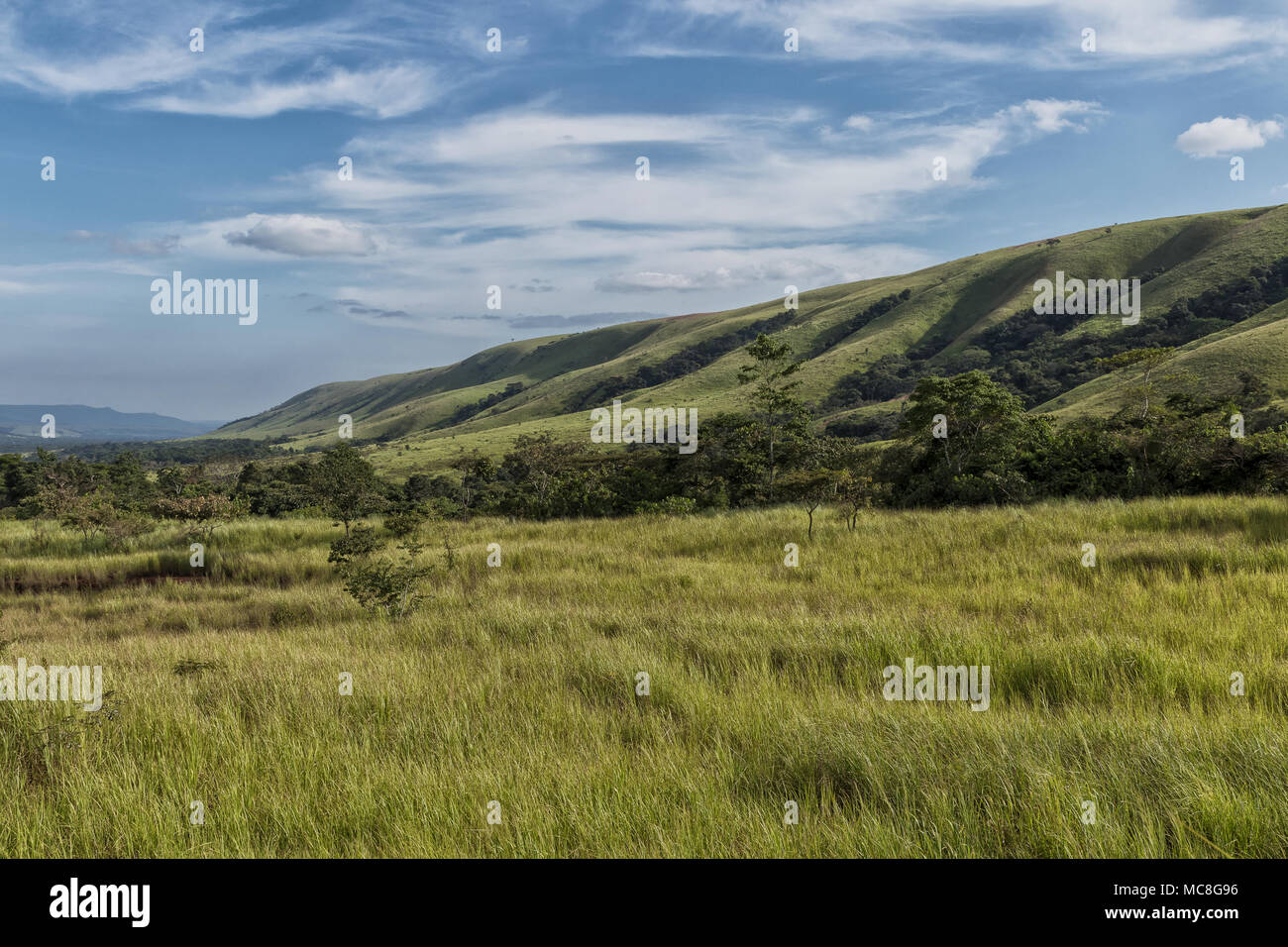Green valley in malanje, Angola. Africa. - Stock Image