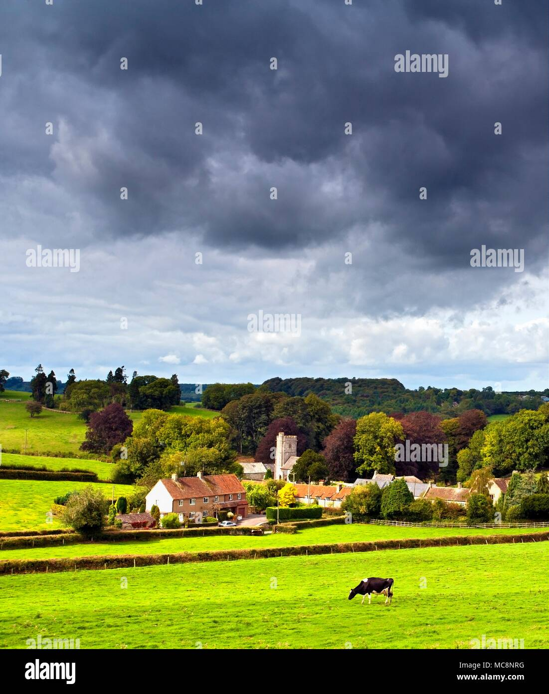 A summer view of the picturesque village of Whitestaunton  in rural Somerset, England. - Stock Image
