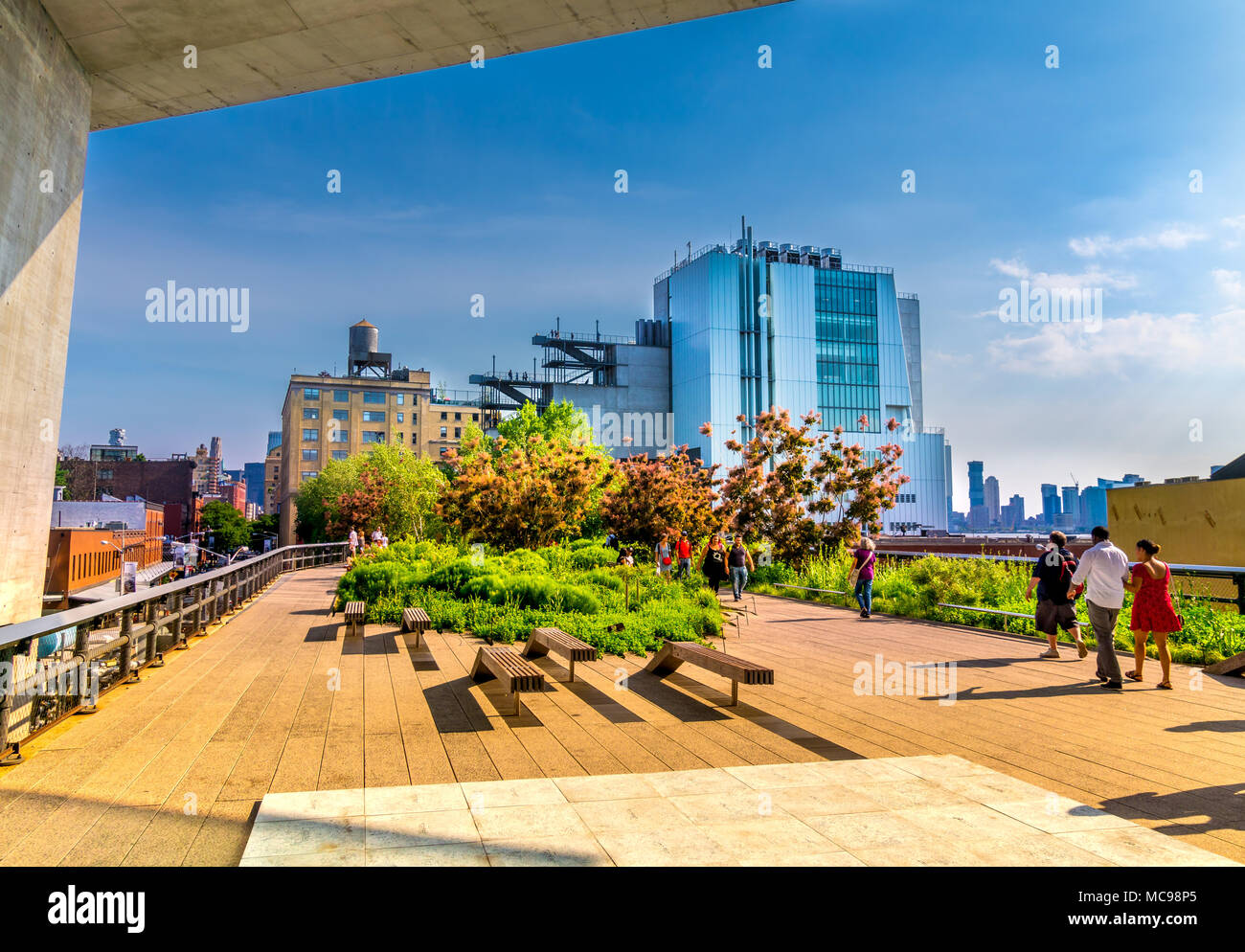 Manhattan, New York City - June 14, 2017: The High Line Park in Manhattan New York. The urban park is popular by locals and tourists built on the elev Stock Photo