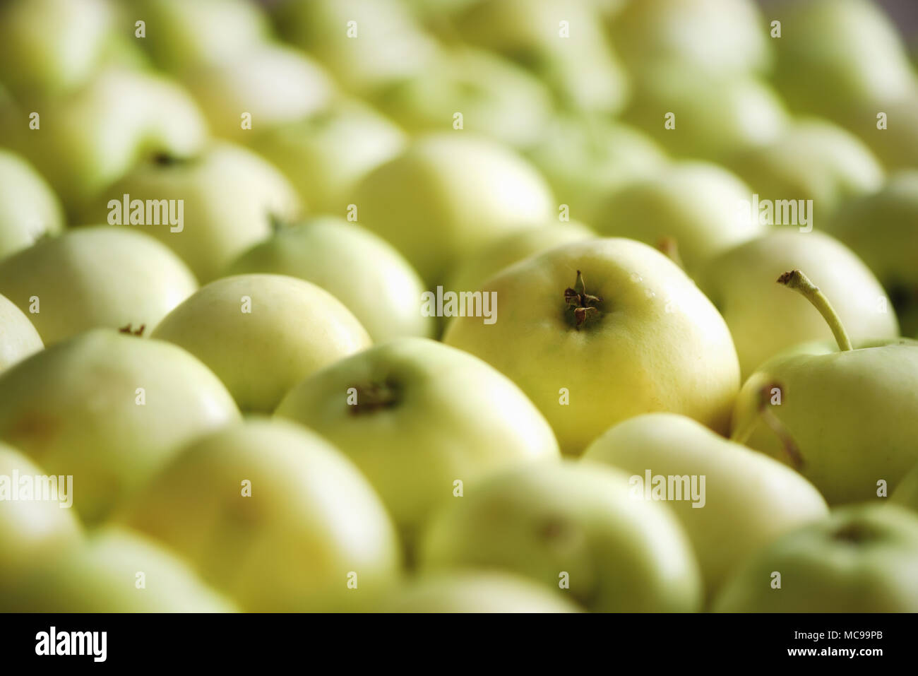 Top view of green apple. Background, concept, copy space, macro - Stock Image