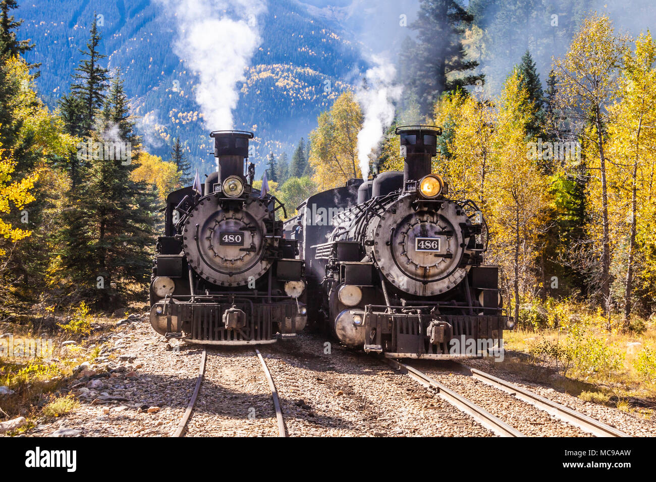 Durango and Silverton Narrow Gauge Railroad 1925 2-8-2 Mikado type Baldwin Steam locomotive #480 with historic mixed consist train on siding. - Stock Image