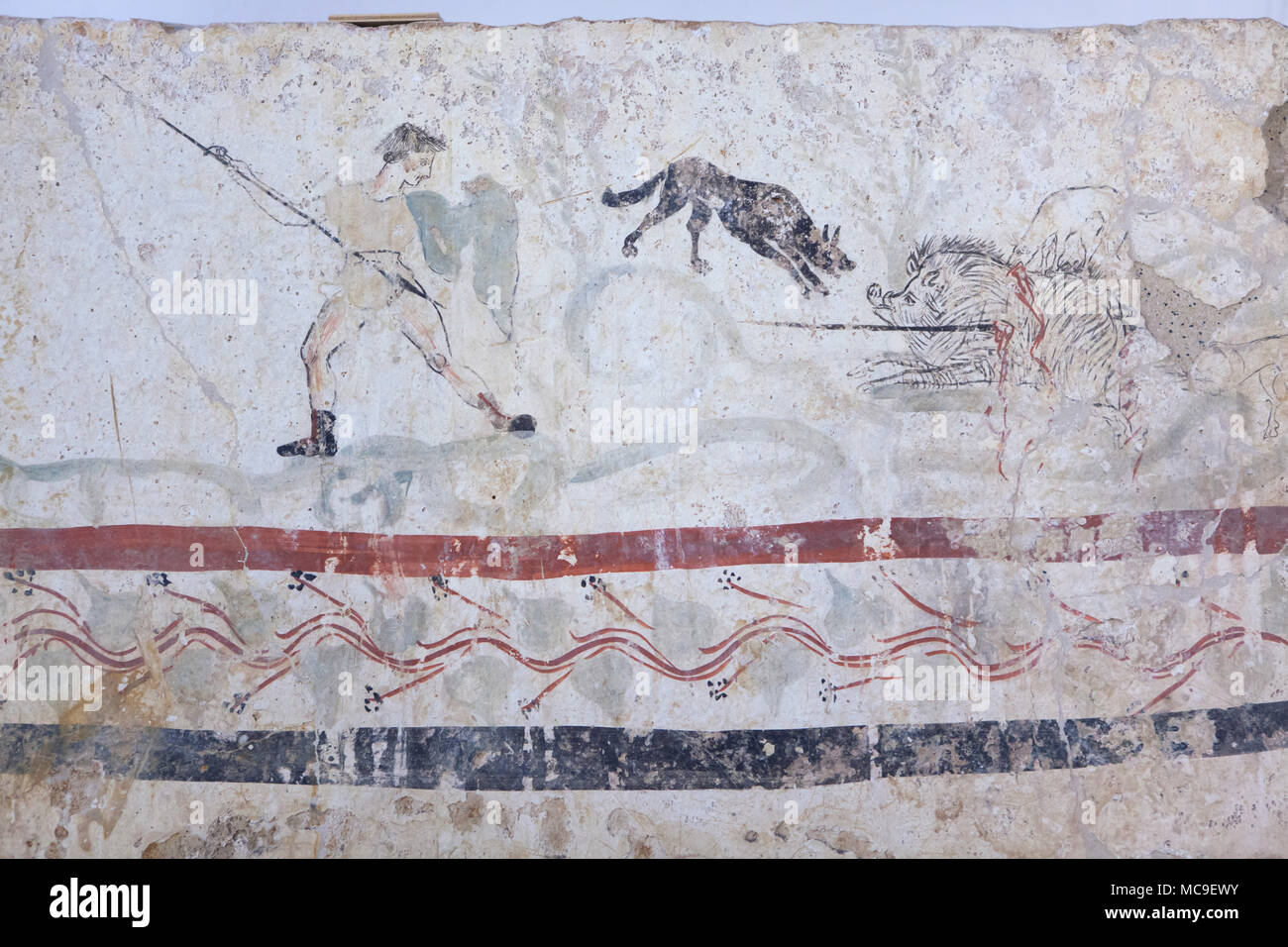 Wild boar hunting depicted in the Lucanian fresco from the 4th century BC on display in the Paestum Archaeological Museum (Museo archeologico di Paestum) in Paestum, Campania, Italy. Stock Photo