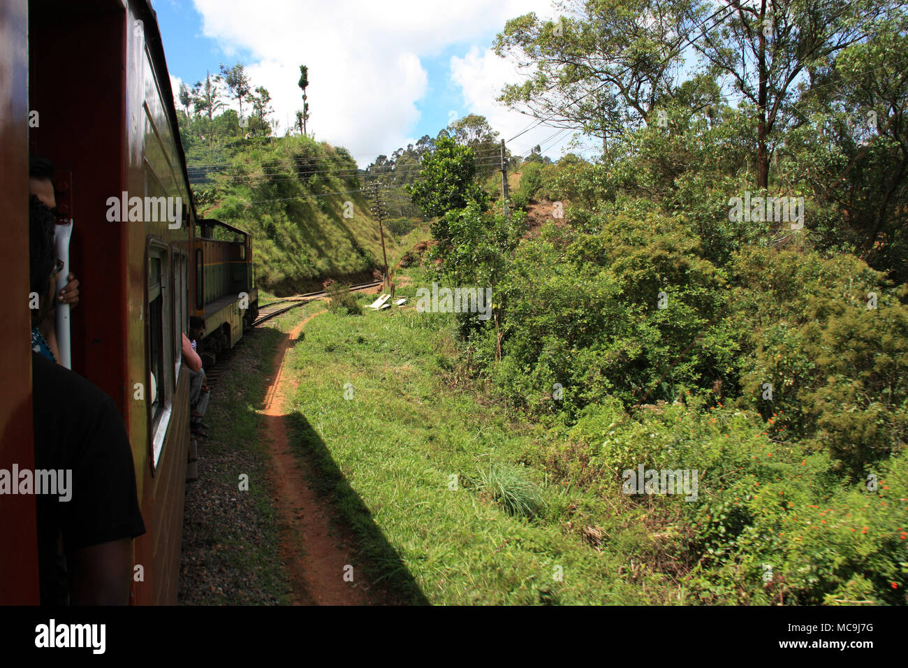 Taking a scenic train ride from Ella to Kandy, passing some tropical vegetation - Stock Image