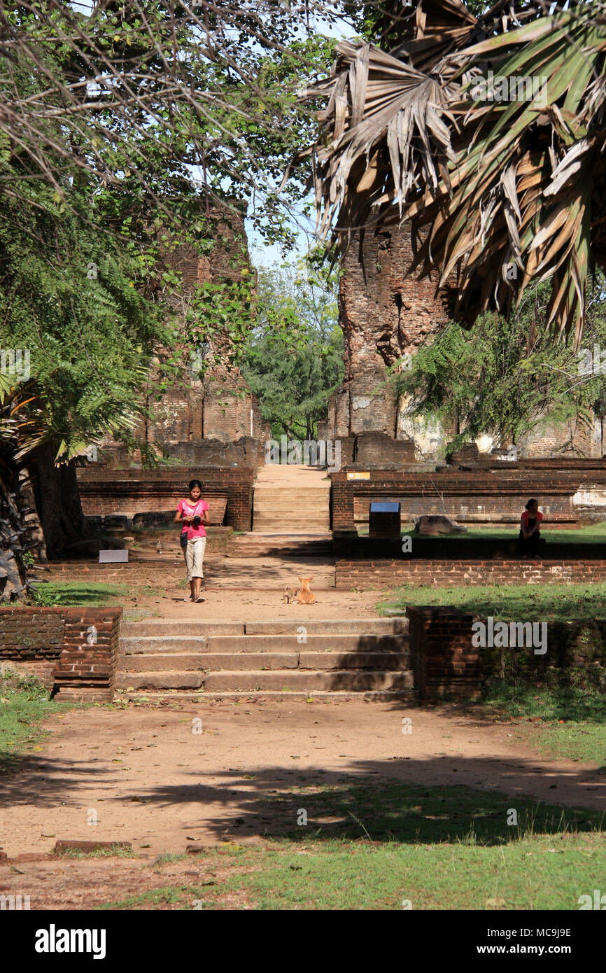 The ruins of the former Royal Palace in the royal ancient city of Polonnaruwa in Sri Lanka - Stock Image