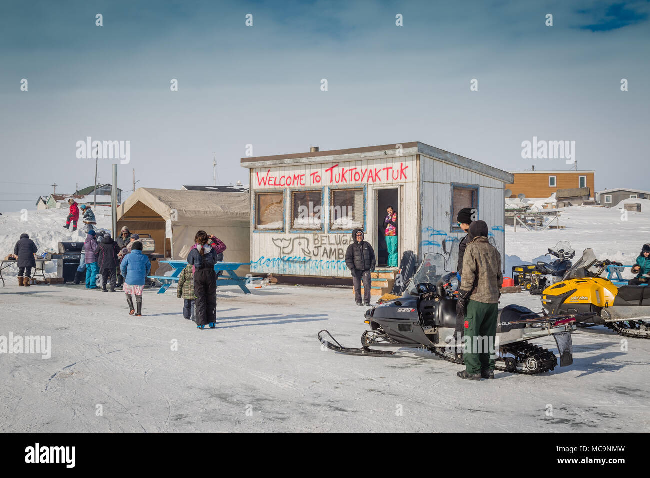 People enjoying the Beluga Jamboree, the spring festival in the arctic hamlet of Tuktoyaktuk, Northwest Territories, Canada. - Stock Image