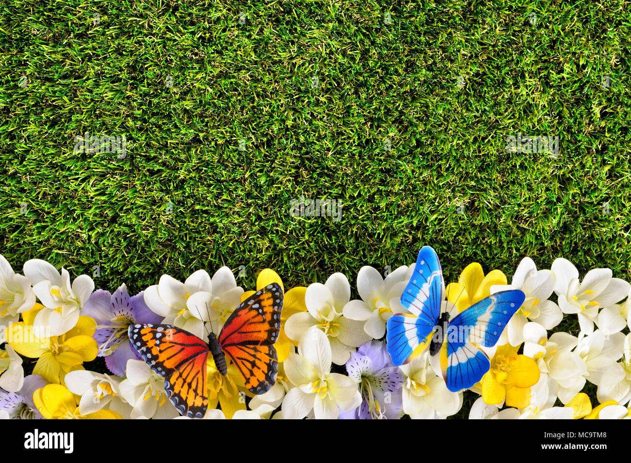 Spring Flower Border Background With Butterflies Grass Copy Space