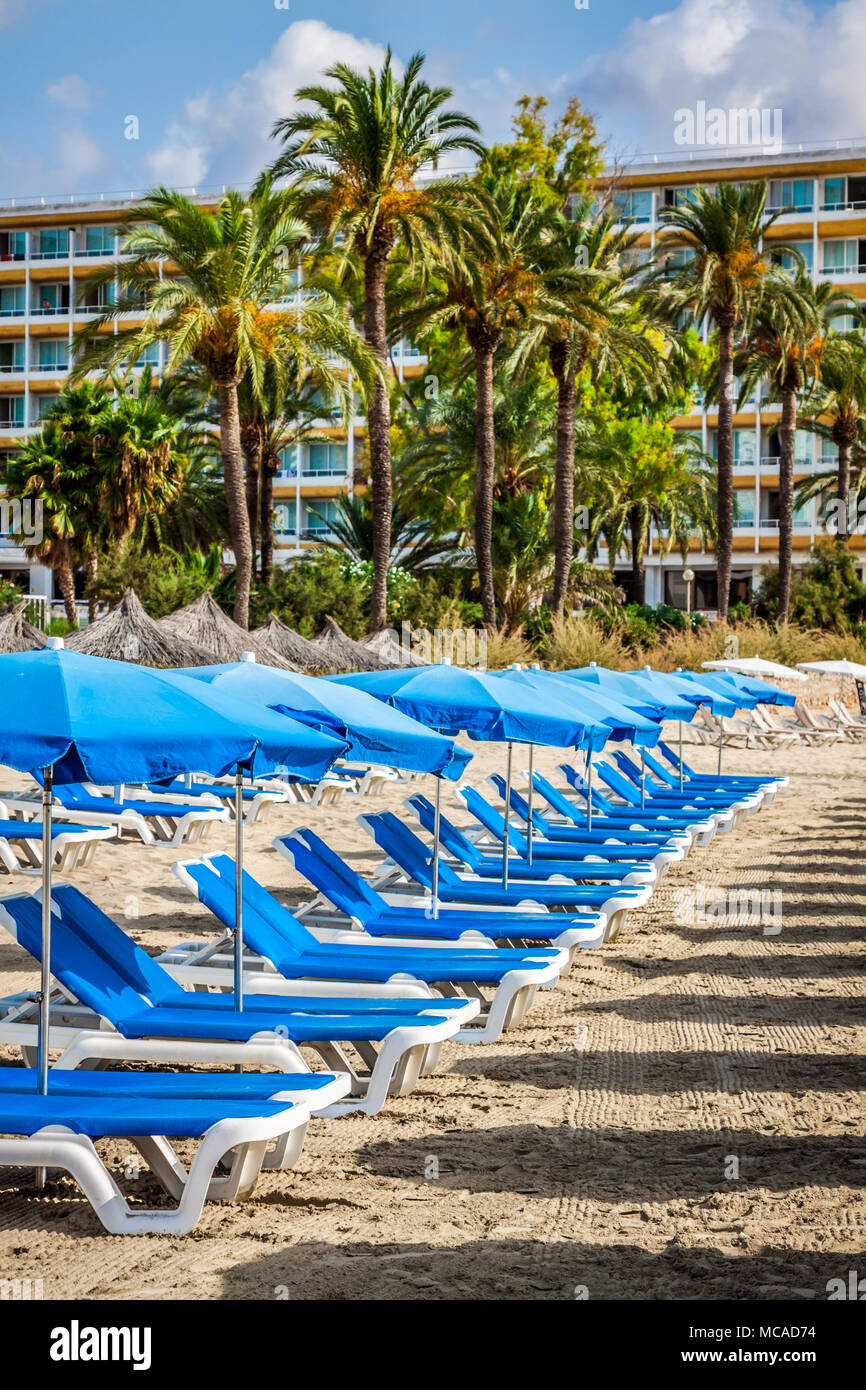 Deck chairs over the sand in a idyllic beach in Ibiza, Balearic Islands, Spain - Stock Image