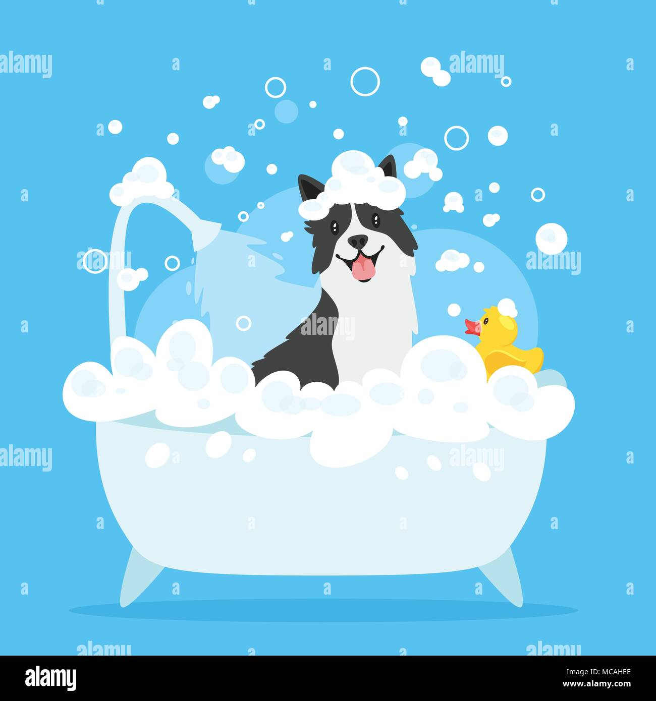 Vector cartoon style illustration of cute border collie dog taking a ...