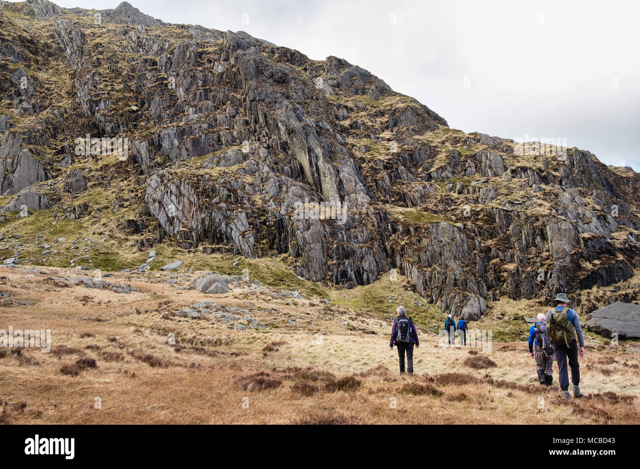 Hikers in Nameles Cwm / Cneifion hiking to start of Seniors Ridge route to Glyder Fawr in mountains of Snowdonia National Park. Ogwen Wales UK Britain - Stock Image