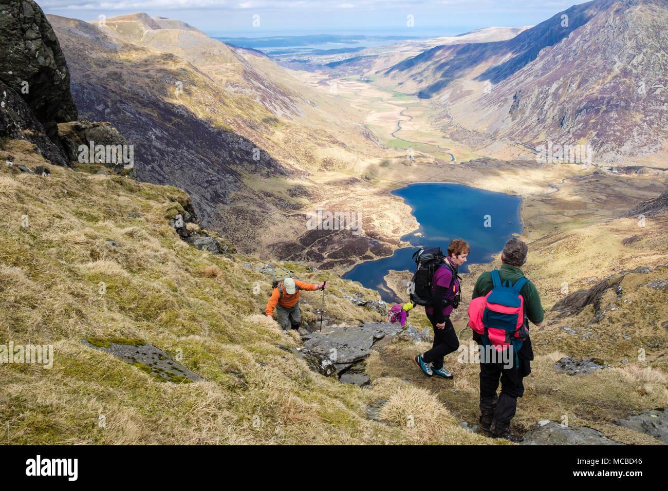 Hikers hiking up Seniors Ridge above Cwm Idwal in mountains of Snowdonia National Park. Ogwen, Wales, UK, Britain - Stock Image