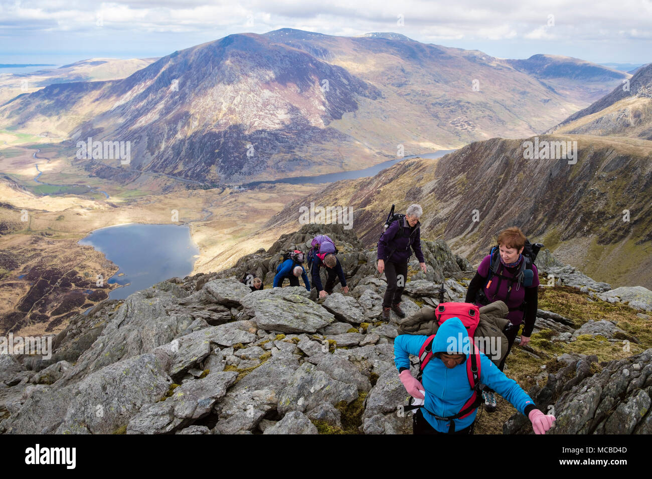 Hikers scrambling up on Seniors Ridge above Cwm Idwal and Ogwen valley with view to Carneddau mountains in Snowdonia National Park. Wales UK Britain - Stock Image