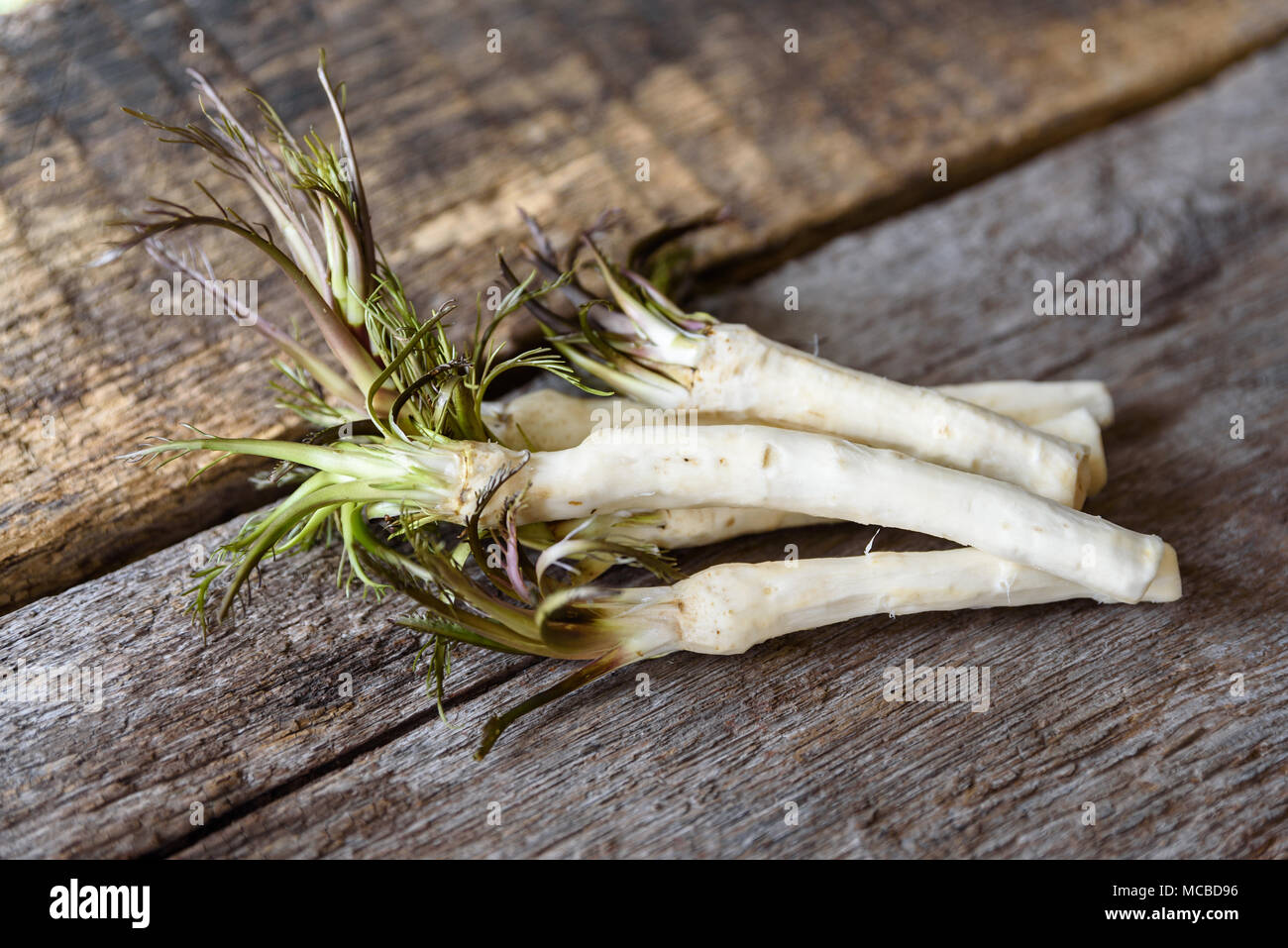 Roots of fresh peeled horseradish on a wooden surface, healthy foods and lifestyle - Stock Image