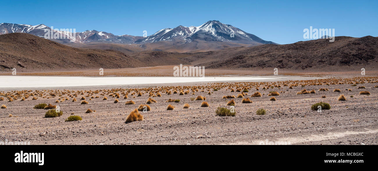 Scenic landscape of Canapa Lagoon (Laguna Canapa) in the Andes mountain range near the Uyuni salt flat, Bolivia, South America - Stock Image