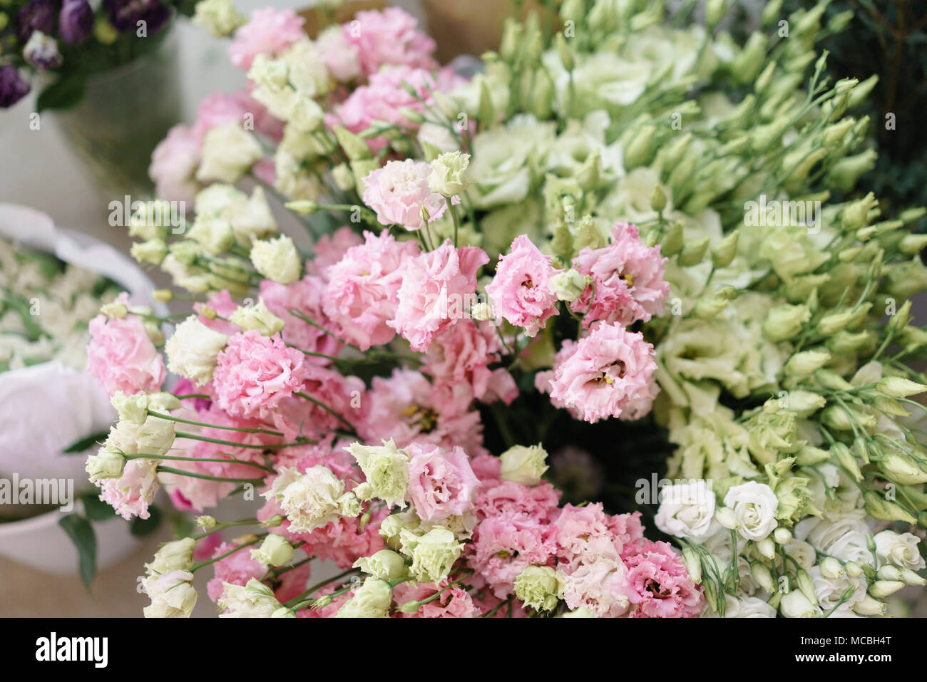 Bouquet of beautiful pink white green color eustoma in vase bouquet of beautiful pink white green color eustoma in vase spring flowers in the cold room of the flower shop mightylinksfo
