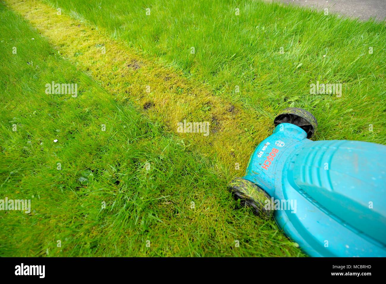 First lawn cut of the year - Stock Image