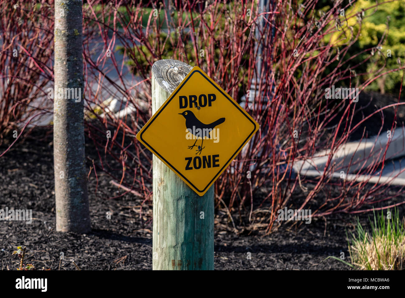 A drop zone sign warning of bird droppings in the immediate area. - Stock Image