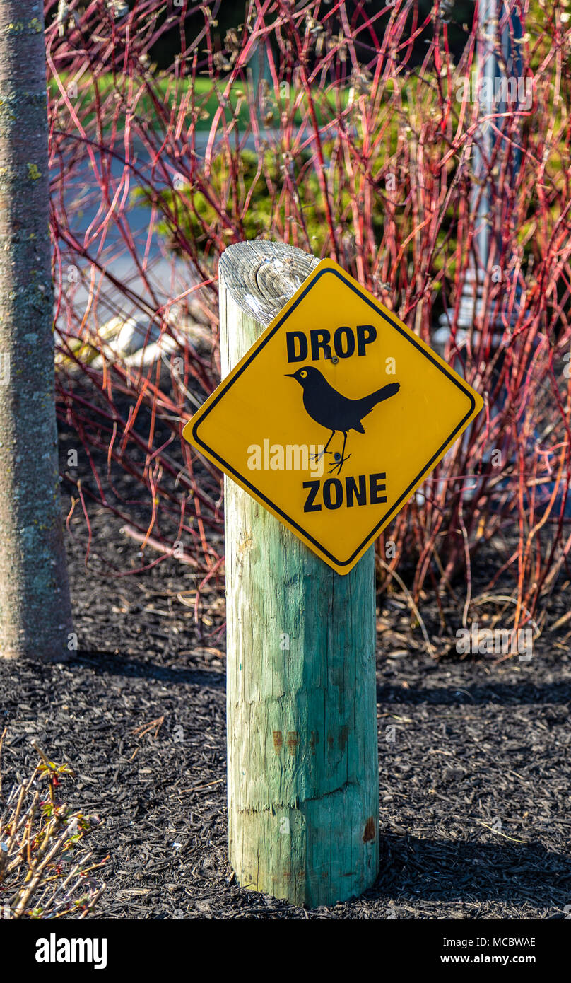 A drop zone sign warning of  excessive bird droppings in the immediate area. - Stock Image