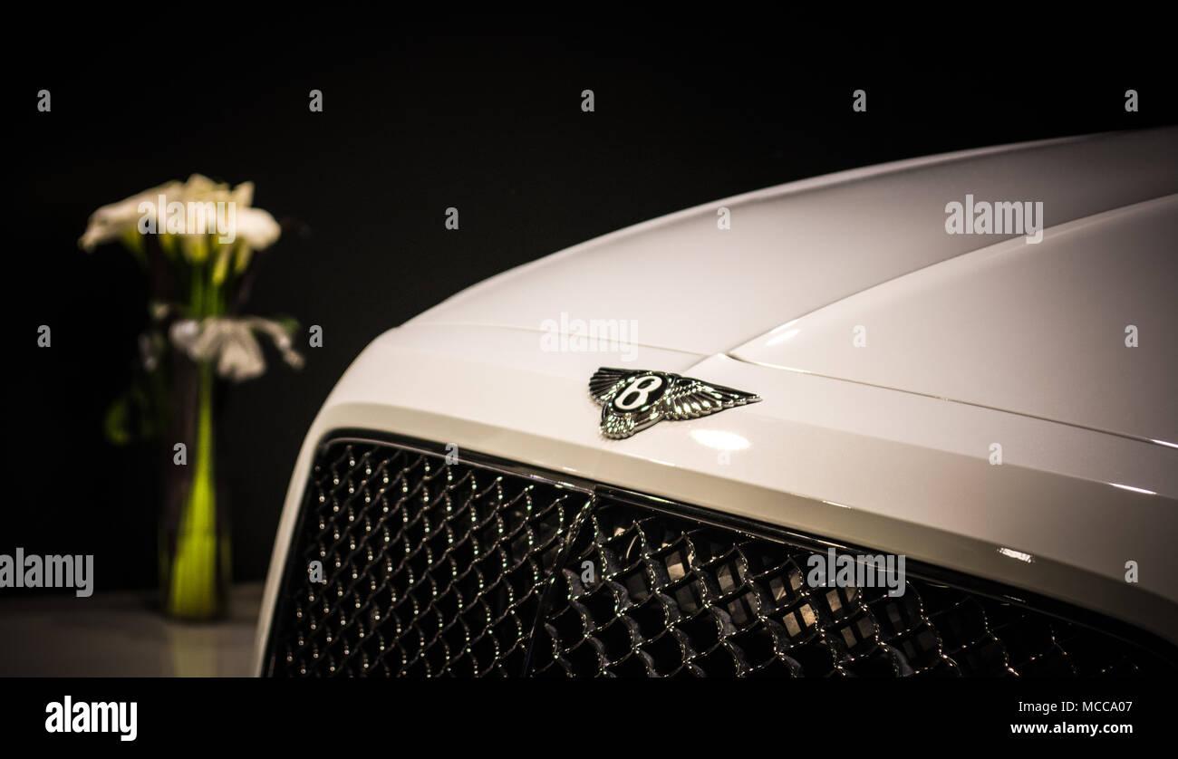 Bentley - Stock Image