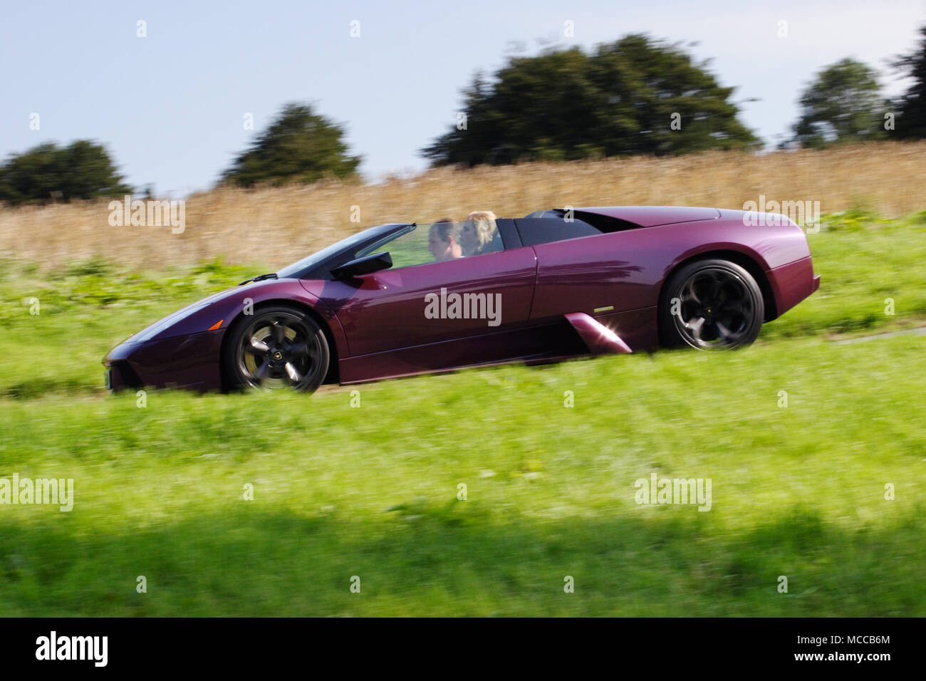 Low Angle Profile (side View) Of A Purple Lamborghini Murcielago Roadster  (open Top