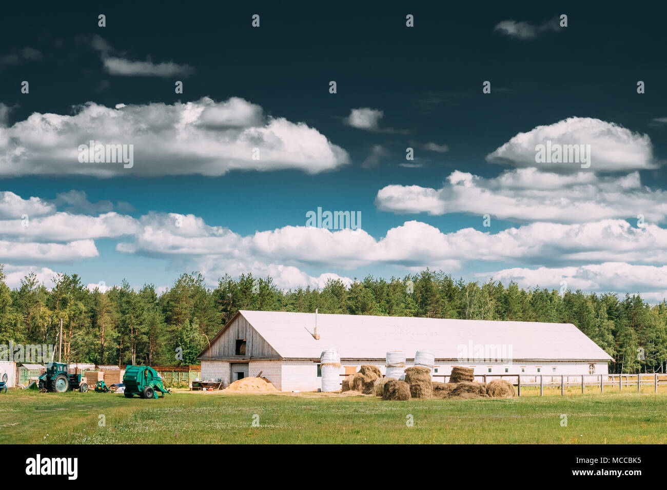 Countryside Rural Paddock For Horse, Shed Or Barn Or Stable With Haystacks In Late Summer Season. Agricultural Rural Farm Landscape At Sunny Day. - Stock Image