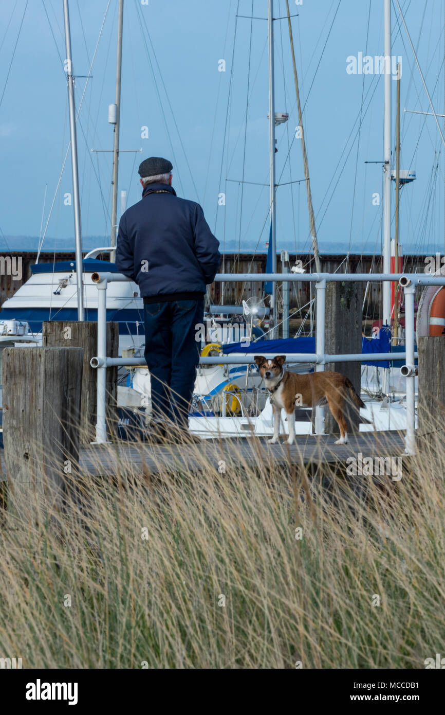 A man leaning on a fence at the side of a scenic harbour with a small dog being walked at his feet. Walking the dog elderly gentleman Mans best friend - Stock Image
