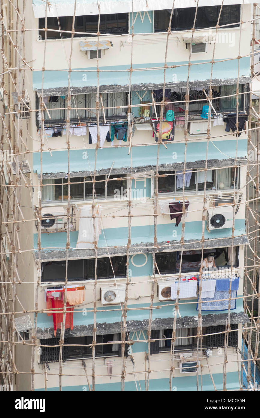 Builders repairing a building using traditional Indian wooden scaffolding made out of wood poles tied together with rope, Malabar, Mumbai, India - Stock Image